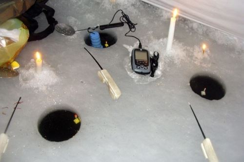 Fishing rods for fishing on a float in winter