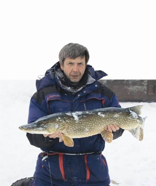 Pike on vents in the Arctic